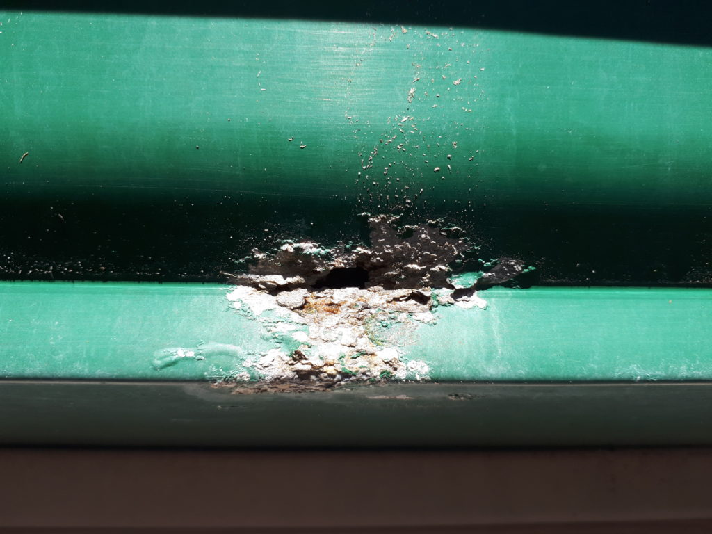 Permanent Damage caused by Lichen growing on gutters and other metal surfaces.