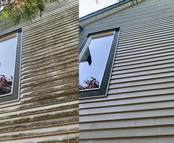 Before & After of an algae covered wall. Our hand washing method will remove all the algae from the vinyl siding surface, leaving it looking like new again.
