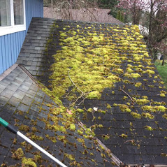 Roof demossing